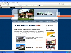 Real estate agent company website